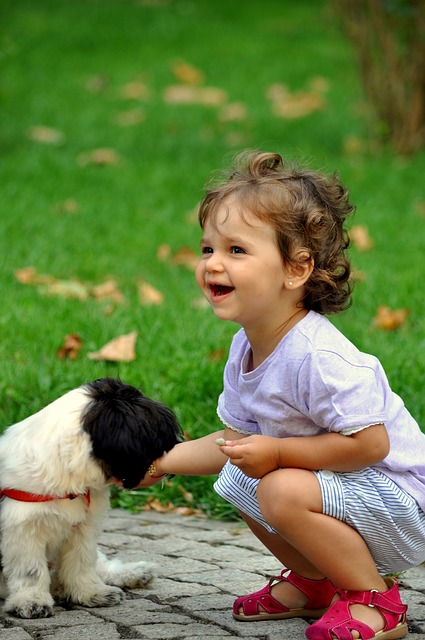 Familienhund_Artikelbild1