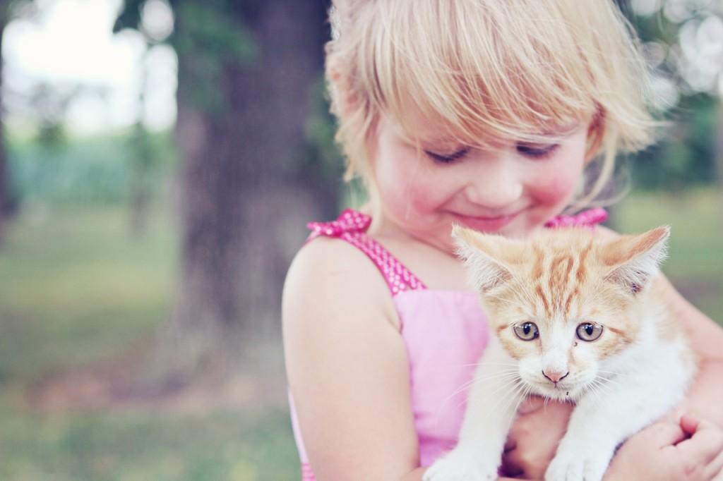 Früh aneinenader gewöhnt werden diese beiden gute Freunde. | Foto: mcconnmama - pixabay.com